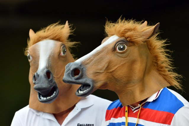 Spectators enjoy the match while wearing horse masks during day two of the first Ashes cricket Test match between England and Australia at the Gabba Cricket Ground in Brisbane on November 22, 2013. (Photo by Saeed Khan/AFP Photo)