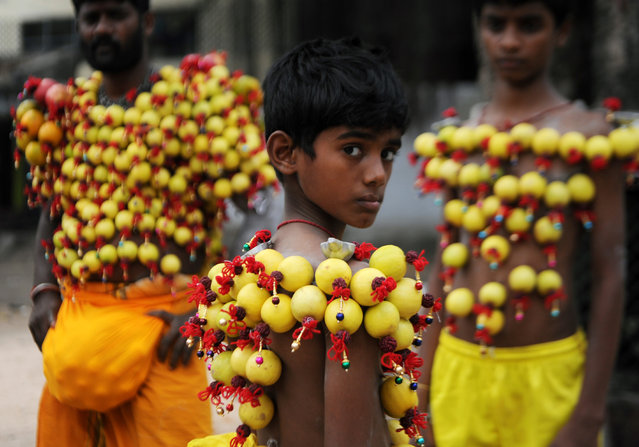 Young Indian Hindu devotees, their bodies pierced with lemon and paladai – bowl with a spout mainly used to feed milk to infants – wait to participate in a procession to mark Shivratri in Chennai on February 26, 2017. Processions are held as an offering and show of devotion by Hindu devotees on the day dedicated to the worship of Shiva, the Hindu god of destruction. (Photo by Arun Sankar/AFP Photo)
