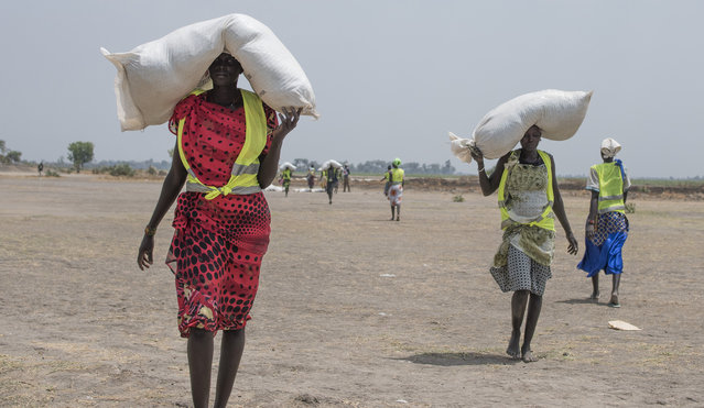 In this photo taken Tuesday, April 11, 2017, a women walk back to their homes after receiving food distributed by ICRC at a site in Leer County region of South Sudan. (Photo by AP Photo/Stringer)