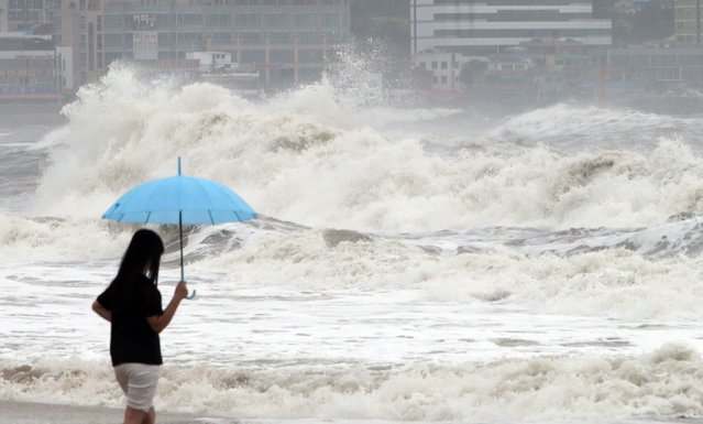 A woman holding an umbrella looks at high waves generated by Typhoon Chan-hom at a beach in the southeastern port city of Busan on July 12, 2015. Domestic flights were cancelled in South Korea on July 12, as Typhoon Chan-hom brought strong winds and heavy rainfall to southwestern provinces. (Photo by AFP Photo/Yonhap)