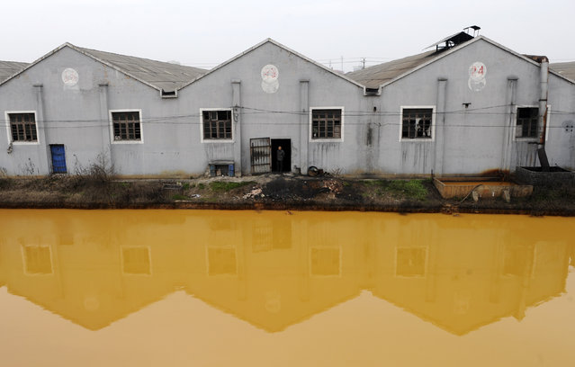 A worker looks at a photographer from a door of a factory manufacturing screws and nuts next to a polluted river in Jiaxing, Zhejiang province March 15, 2012. China's continuing reliance on heavy industry meant it failed to meet its own targets for cleaning its air and water in 2011, the head of the top planning agency told journalists on Monday. (Photo by Reuters/Stringer)