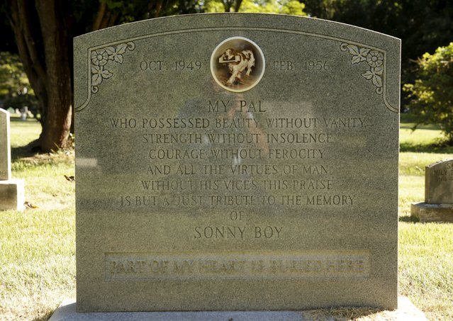 """The gravestone of """"Sonny Boy"""" is seen at the Aspin Hill Memorial Park in Aspen Hill, Maryland August 25, 2015. (Photo by Gary Cameron/Reuters)"""