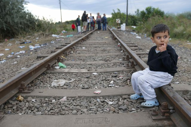 A migrant boy sits on a rail as a group of migrants arrive to a collection point in the village of Roszke, Hungary, September 6, 2015, after crossing the border from Serbia. (Photo by Laszlo Balogh/Reuters)