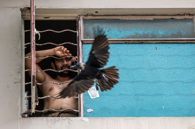 A quarantined resident looks outside their window, in Kuala Lumpur, Malaysia, 07 April 2020. The area is on lockdown in order to curb the ​spread of coronavirus and the disease Covid-19. (Photo by Ahmad Yusni/EPA/EFE)