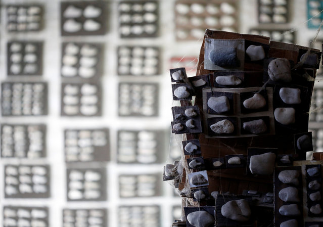 Stones collected by Luigi Lineri are seen at his home workshop in Zevio, near Verona, Italy, June 10, 2016. (Photo by Alessandro Bianchi/Reuters)