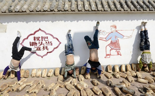 Students of a local acrobatics school practice handstands near mushroom logs, used for cultivating mushrooms, in Dongbei village, Puyang, Henan province October 13, 2014. Dongbei village is famous for its tradition of acrobatics and 75 percents of the local residents take part in acrobatics related work. (Photo by Reuters/Stringer)