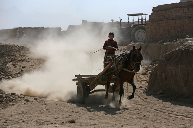 An Afghan boy works at a local brick factory on the outskirts of Kabul, Afghanistan, Monday, September 19, 2016. (Photo by Rahmat Gul/AP Photo)