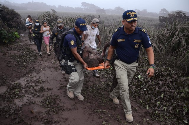 Police officers carry a wounded man after the eruption of the Fuego Volcano, in El Rodeo village, Escuintla department, 35 km south of Guatemala City on June 3, 2018. (Photo by Noe Perez/AFP Photo)