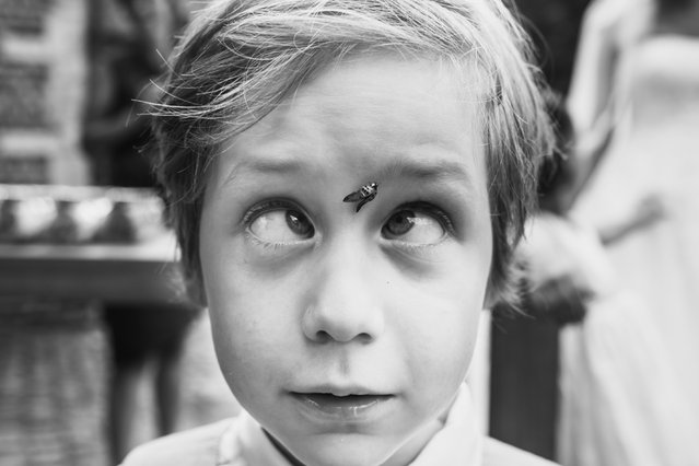 Fly lands on childs forehead. (Photo by Philippe Swiggers/Caters News Agency/ISPWP)