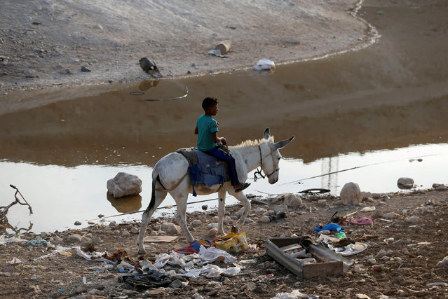 A boy rides a donkey past a wastewater pond in the Palestinian Bedouin village of Khan al-Ahmar that Israel plans to demolish, in the occupied West Bank October 2, 2018. (Photo by Mohamad Torokman/Reuters)