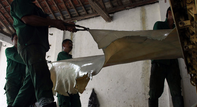 Workers carefully move a sheet of leather freshly stripped of any traces of fat. (Photo by Rezza Estily/JG Photo)