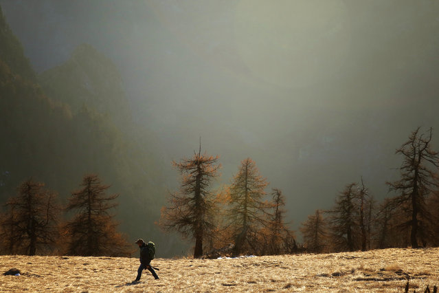 A man walks in the Alps region near Elva, in the Maira Valley, northwest Italy, on December 15, 2016. (Photo by Marco Bertorello/AFP Photo)