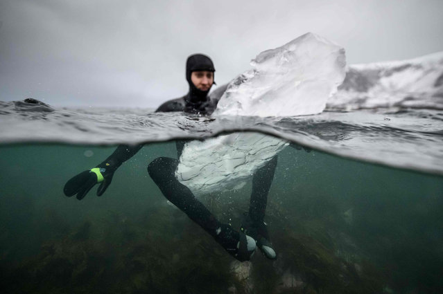 Swedish surfer Pontus Hallin waits for waves while sitting on his surfboard made of ice at the Delp surfing spot, near Straumnes, in the Lofoten Islands, over the Arctic Circle on February 18, 2019. (Photo by Olivier Morin/AFP Photo)