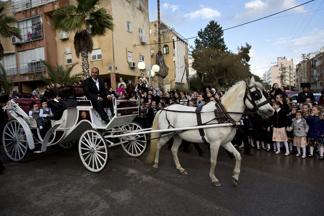 Ultra-Orthodox Jews ride a horse-drawn carriage during the wedding of the grandson of the Rabbi of the Tzanz Hasidic dynasty community, in in Netanya, Israel, Wednesday, March 16, 2016. (Photo by Oded Balilty/AP Photo)