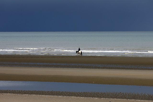 A man rides a horse along a beach in the seaside town of Zeebrugge, Belgium, February 24, 2016. (Photo by Francois Lenoir/Reuters)