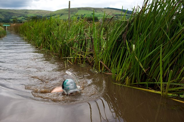 The home of bog snorkeling is Llanwrtyd Wells, the smallest and weirdest town in Great Britain. Competitors must wear snorkels and flippers and complete the course without using conventional swimming strokes. Wet suits are not mandatory, but the smarter swimmers sport them. (Photo by Sol Neelman)