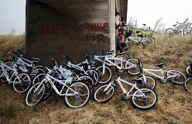 Immigrants from Syria stand near their bicycles as they hide from the rain under a bridge near the Greek border with Macedonia,  June 17, 2015. Hungary announced plans on Wednesday to build a four-metre-high fence along its border with Serbia to stem the flow of illegal migrants. Several thousand migrants are daily crossing the Balkans towards Hungary on their way to other European Union countries.  REUTERS/Ognen Teofilovski