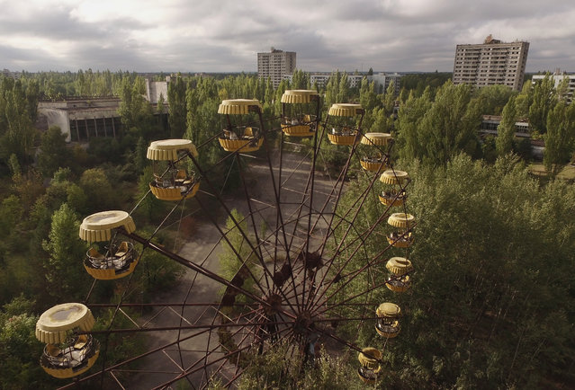 In this aerial view an abandoned ferris wheel stands on a public space overgrown with trees in the former city center on September 30, 2015 in Pripyat, Ukraine. (Photo by Sean Gallup/Getty Images)