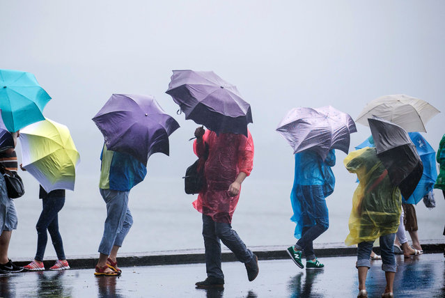 People use umbrellas to shield themselves from wind and rain at West Lake in Hangzhou in eastern China's Zhejiang province Saturday, July 11, 2015. (Photo by Chinatopix via AP Photo)