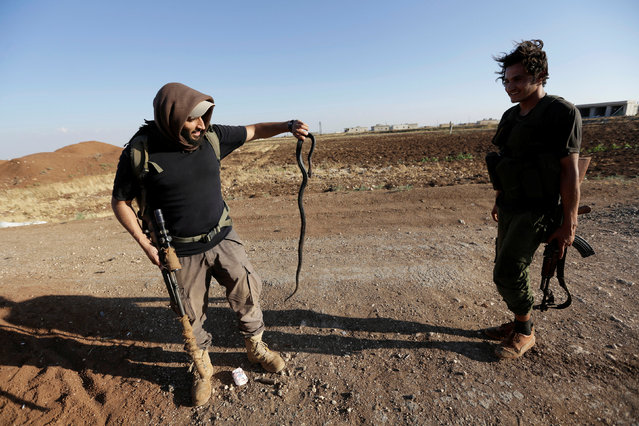 """A rebel fighter from """"Jaysh al-Sunna"""" holds a snake in the southern Aleppo countryside, Syria June 10, 2016. (Photo by Khalil Ashawi/Reuters)"""