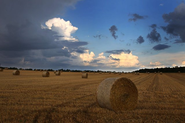 Dark clouds hang over a harvested corn field near Biebelried, southern Germany, on August 4, 2014. (Photo by Karl-Josef Hildenbrand/AFP Photo/DPA)
