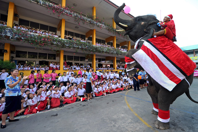 An elephant dressed in a Santa Claus costume performs by standing on its hind legs before giving out gifts to students to mark the Christmas season at a school in Ayutthaya province on December 24, 2010. The event was held as part of a campaign to promote Christmas in Thailand.    AFP PHOTO / PORNCHAI KITTIWONGSAKUL (Photo credit should read PORNCHAI KITTIWONGSAKUL/AFP/Getty Images)