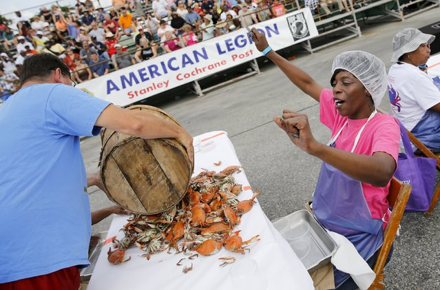 A contestant cheers for the start of the crab-picking contest, for professional pickers from local seafood businesses, during the annual National Hard Crab Derby in Crisfield, Maryland September 5, 2015. The town of Crisfield hosts the festival each year to celebrate and highlight the importance of the crab industry to their economy. (Photo by Jonathan Ernst/Reuters)