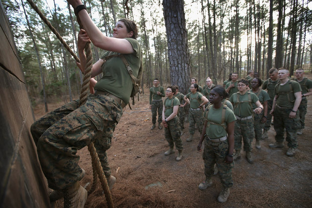 Male and female Marines wait to climb an obstacle on the Endurance Course during Marine Combat Training (MCT) on February 20, 2013 at Camp Lejeune, North Carolina.  Since 1988 all non-infantry enlisted male Marines have been required to complete 29 days of basic combat skills training at MCT after graduating from boot camp. MCT has been required for all enlisted female Marines since 1997. About six percent of enlisted Marines are female.  (Photo by Scott Olson)
