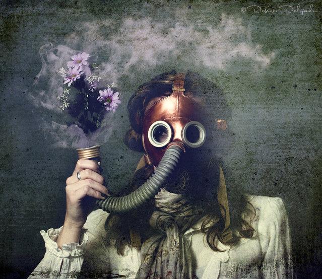 """""""Oxygen"""". (Photo by Desirée Delgado)"""