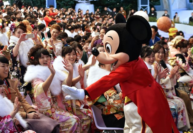 "Disney character Mickey Mouse greets 20-year-old women wearing kimonos during their ""Coming-of-Age Day"" celebration at Tokyo Disneyland in Urayasu, suburban Tokyo on January 12, 2015. The number of people aged 20 years old, the legal age of adulthood in Japan, is estimated to stand at 1.26 million this year, an increase of 50,000 from 2014. (Photo by Yoshikazu Tsuno/AFP Photo)"