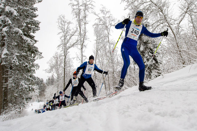 Participants compete during the 35th Viru Marathon in cross-country skiing  near Rakvere, Estonia on January 30, 2021. (Photo by Raigo Pajula/AFP Photo)