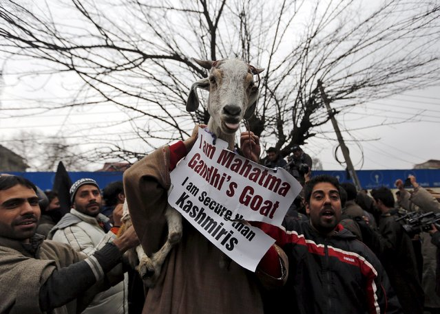 Supporters of Kashmiri lawmaker Sheikh Abdul Rashid, commonly known as Engineer Rashid, carry a goat with a placard as they shout slogans during a demonstration to mark International Human Rights Day in Srinagar December 10, 2015. (Photo by Danish Ismail/Reuters)