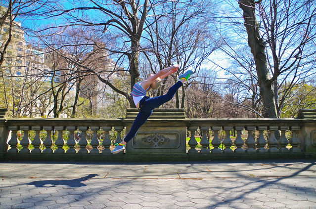 """""""An afternoon in Central Park"""". (Photo by Daniel Sorine)"""