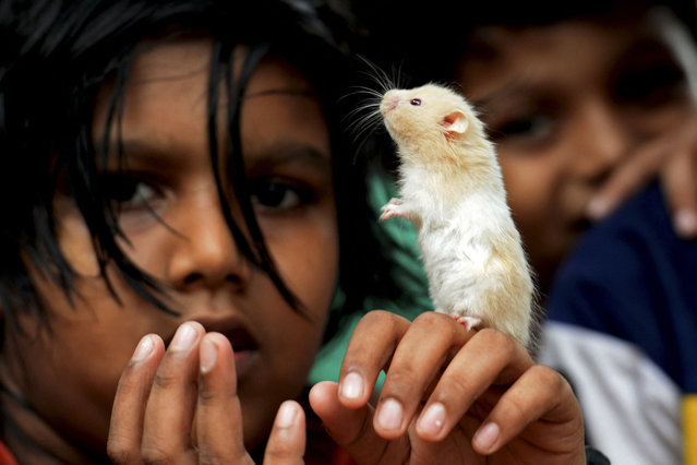Children play with their pet Hamster at a street in Kochi on March 29, 2021. (Photo by Arun Sankar/AFP Photo)