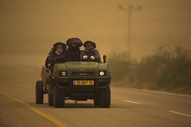 Thai workers ride an ATV during a sandstorm near Kibbutz Lachish near the southern city of Kiryat Gat February 11, 2015. Southwest winds and dust transport from North Africa caused air pollution levels that are the highest recorded in the past five years, the Environmental Protection Ministry reported Wednesday morning. (Photo by Amir Cohen/Reuters)
