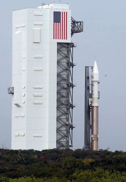 An AtlasV rocket rolls out to Launch Complex 41 carrying the Maven spacecraft Saturday, Nov. 16, 2013, at Cape Canaveral Air Force Station in Florida. The Maven spacecraft will directly assess the atmosphere of the planet Mars. (Red Huber/Orlando Sentinel/MCT)