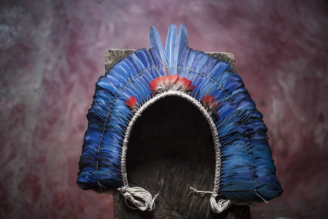 The Xikrin àrkàm, or headdress, is worn at celebrations and special occasions. It is made from the brightly colored feathers of jungle birds, such as the parrot. (Taylor Weidman)