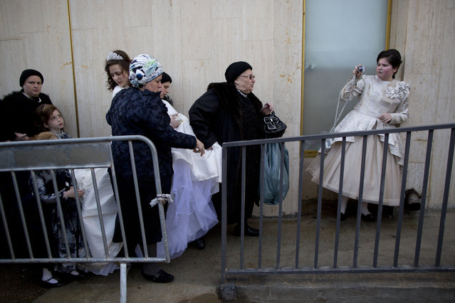 A Jewish bride arrives with family members during her wedding to the grandson of the Rabbi of the Tzanz Hasidic dynasty community, in Netanya, Israel, Tuesday, March 15, 2016. (Photo by Oded Balilty/AP Photo)