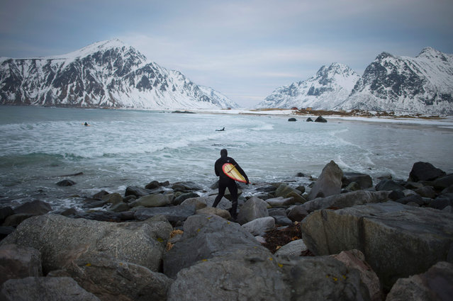 A man goes to surf at the snowy beach of Flackstad, near Ramberg, in Lofoten archipelago, Arctic Circle, on March 12, 2016. (Photo by Olivier Morin/AFP Photo)