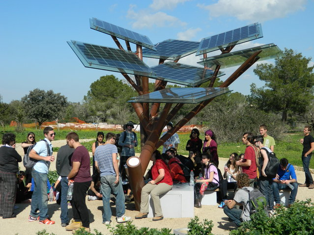 "Solar-Powered Tree ""eTree"" In Israeli"