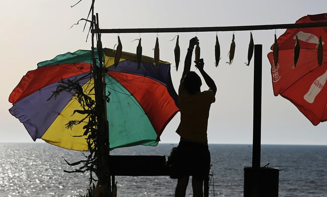 A Palestinian vendor hangs corn on the cob at his stand along the Mediterranean Sea, in Gaza City's fishing harbor, Tuesday, May 31, 2016 . The harbor is one of the few open public spaces in this densely populated city. (Photo by Hatem Moussa/AP Photo)