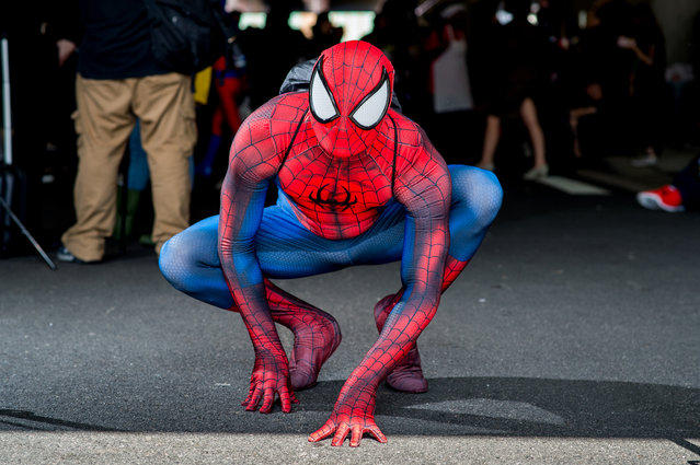 A fan cosplays as Spider-Man from the Marvel universe during 2017 New York Comic Con, Day 2 on October 6, 2017 in New York City. (Photo by Roy Rochlin/WireImage)