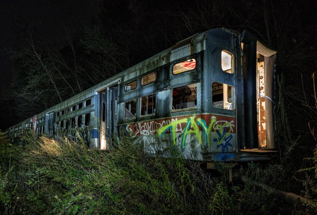 Tucked away in these spooky woodlands, one man has amassed a huge collection of decaying trolley cars. Once a novel mode of public transport in the likes early 20th Century New York, the hauntingly beautiful trolleys are now at one with nature – a scene that abandoned location photographer Matthew Christopher was able to discover in a location not disclosed to the public. Matthew, of Abandoned America, has shot the roughly 40 trolleys at various stages throughout the years – his images ranging from those that still have their original paint jobs to rusted vehicles covered in graffiti. There's a rather ghostly feel to the location, Matthew said, walking through the woodlands to, all of a sudden, discover row after row of decaying mode of transport. Here: Abandoned trolley graveyard in Pennsylvania. (Photo by Matthew Christopher/Abandoned America/Caters News Agency)