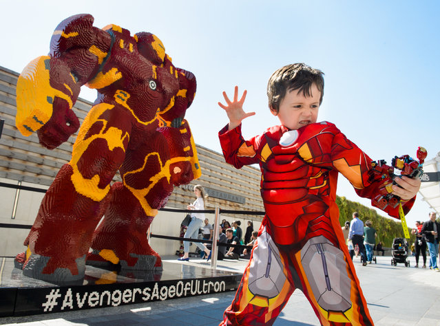 Alfie Ward dressed as Little Iron Man poses in front of the UK's largest LEGO statue as it is unveiled at the London premiere of LEGO Super Heroes: Marvel's Avengers Age of Ultron at Westfield Shopping Centre, London, on Tuesday, April 21, 2015. The life-size Hulk Buster Smash model stands over 2.5 meters high, 2.3 meters wide, weighs a ton and took six professional builders over 960 hours to create with over a million LEGO bricks, the most for any LEGO statue built in the UK. (Photo by Fiona Hanson/AP Images for LEGO)