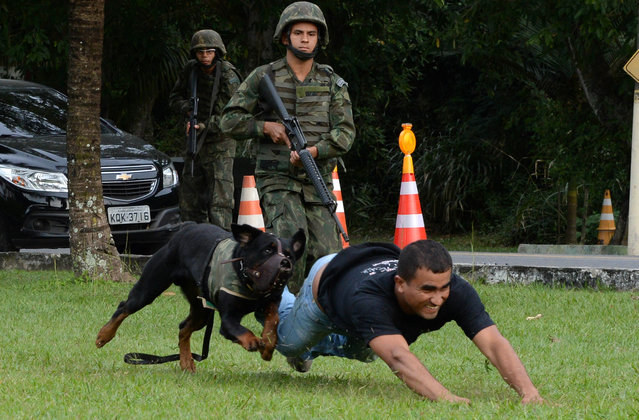 Members of the Brazilian Navy take part in a terrorist attack drill dealing with chemical weapons as part of the security measures for the upcoming FIFA Confederations Cup and World Youth Day, and the FIFA 2014 World Cup and 2016 Olympic Games, in Rio de Janeiro, Brazil, on May 27, 2013. (Photo by Vanderlei Almeida/AFP Photo)