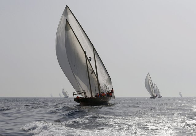 UAE sailors take the start of the Al Gaffal Dhow Race in Dubai, United Arab Emirates May 23, 2015. (Photo by Ahmed Jadallah/Reuters)