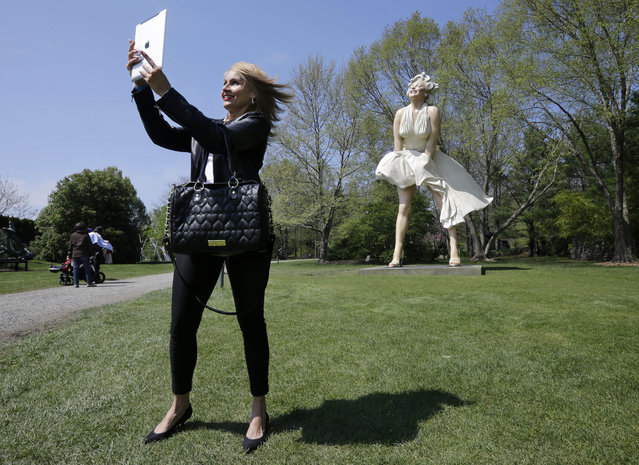 "Johanna Bianchi, of Freehold, N.J., takes a photo of herself with a larger-than-life sculpture of Marilyn Monroe at the Grounds for Sculpture in Hamilton, N.J., Sunday, May 4, 2014. The 26-foot-tall ""Forever Marilyn"" created by 84-year-old sculptor Seward Johnson went on display Sunday at the 24-acre park just outside the state capital of Trenton. The exhibit will remain open to the public through September 21. (Photo by Mel Evans/AP Photo)"