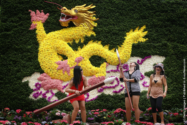Singapore Sentosa Flower Show In Full Bloom