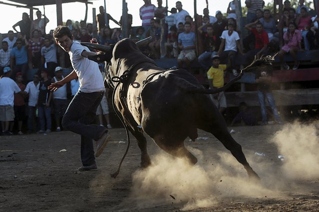 A man runs away from a bull during festivities honouring the capital's patron saint Santo Domingo de Guzman in Managua, Nicaragua August 2, 2015. (Photo by Oswaldo Rivas/Reuters)