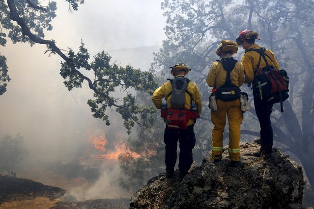 Firefighters look at advancing flames from the Jerusalem Fire in Lake County, California, August 13, 2015. Firefighters kept battling blazes across drought-parched California on Thursday, and thousands of them made solid progress against a wildfire that has forced 150 people to evacuate homes outside of San Francisco. (Photo by Robert Galbraith/Reuters)